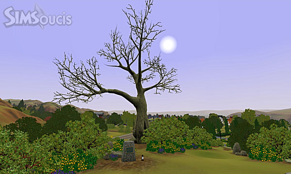 simsoucis sims 3 appaloosa plains 2